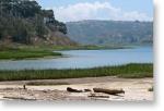 batiquitos_lagoon1