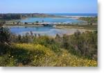 BLF lagoon shot